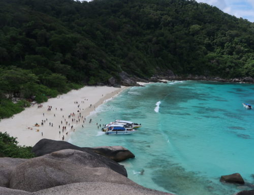 Why You Have to Visit the World Class Similan Islands