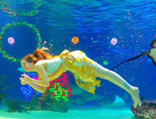 63 Building Aqua Planet, Observatory, & Museum of Colors in Seoul Korea –  Guest Vlog LIVE TRAVEL ASIA