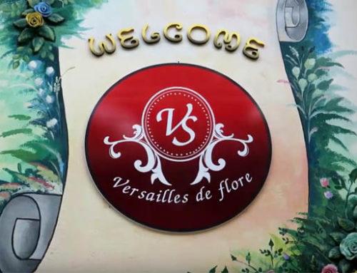 Versailles De Flore – Guest Vlog Amazing Chiang Mai