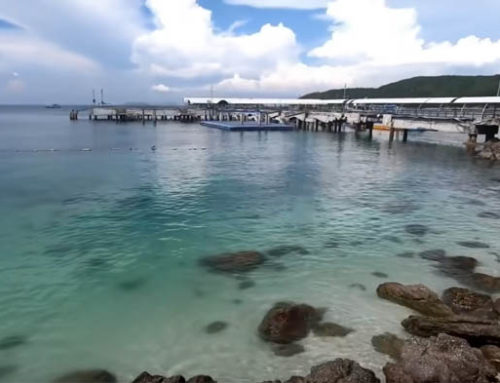 BARGAIN Koh Larn Resort and The PATTAYA King of Fish & Chips Friday is BACK! – Guest Vlog NDtvi Thailand