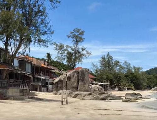 Paradise! Taa Toh Lagoon + Shark Bay, Freedom Beach + more! Koh Tao Thailand 2021 – Guest Vlog SideTripLife